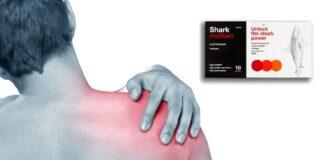Shark Motion - Wirksamkeit, Meinungen, Preis, Zusammensetzung, Auswirkungen